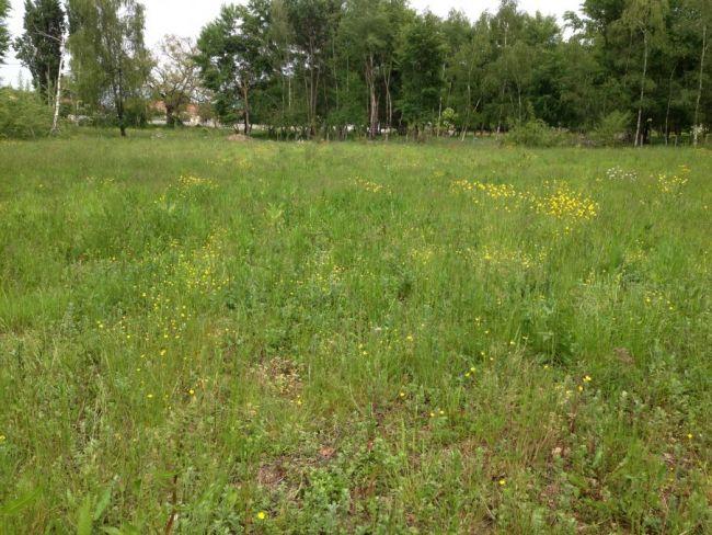 Terrain de 800 m² sur la commune du Pian-sur-Garonne