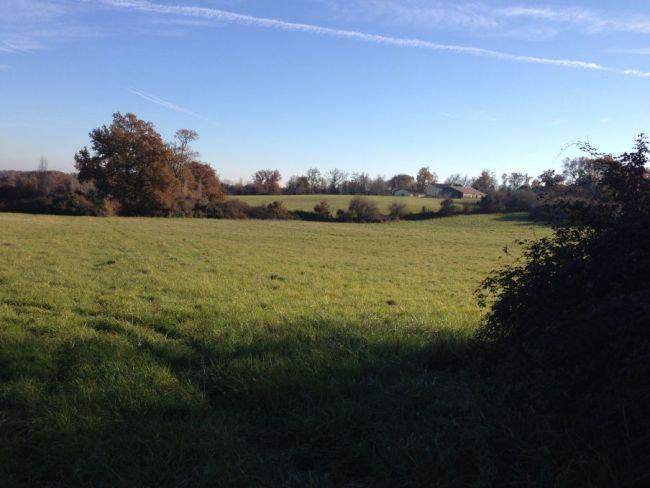 Terrain de 1900 m² sur la commune de Verdelais